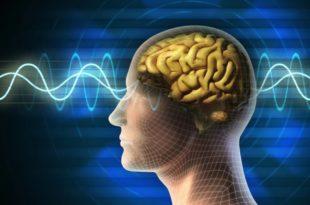 الموجات-الدماغية-يمكنها-التنبؤ-بالأحلام،-ثقف-نفس